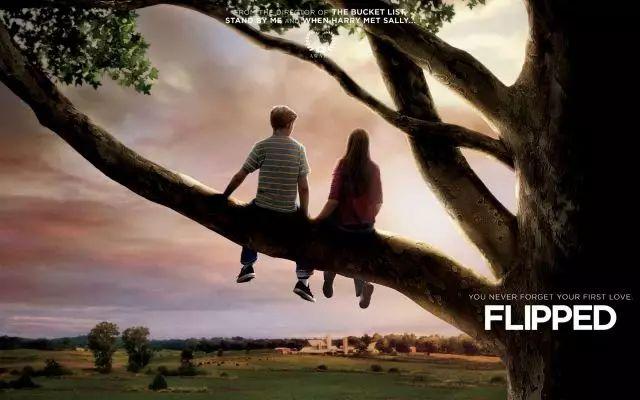 电影《怦然心动》,教会我们爱的第一课